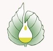 انجمن گیاهان دارویی ایران