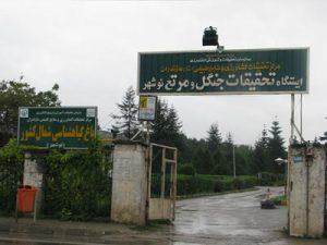باغ گیاهشناسی نوشهر Botanical Garden Iran Noshahr