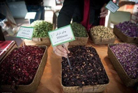 نمایشگاه ارگانیک- چای ترش