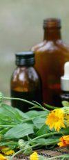 herbal-medicine داروهای گیاهی