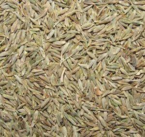 cumin seeds زیره سبز