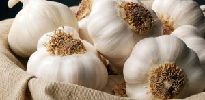 سیر Garlic