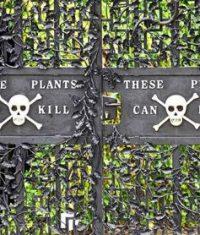 باغ گیاهان سمی خطر