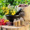 گیاهان دارویی عطاری بازار فروش