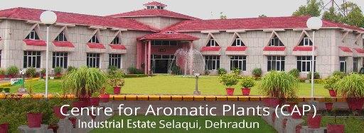 مرکز تحقیقات گیاهان معطر هند