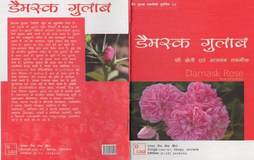 کتابچه گیاه معطر گل محمدی