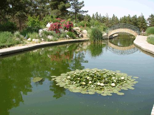 باغ گیاهشناسی کاشان 3