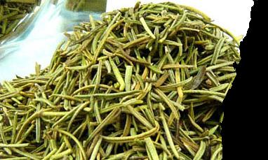 رزماری خشک Dried Rosemary