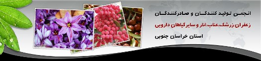 انجمن تولیدکنندگان زعفران، زرشک، انار و گیاهان دارویی خراسان جنوبی