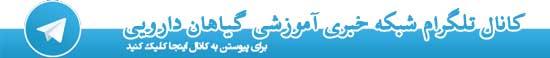 کانال رسمی تلگرام شبکه خبری آموزشی گیاهان دارویی