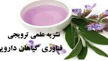 فصلنامه علمی-ترویجی فناوری گیاهان دارویی ایران