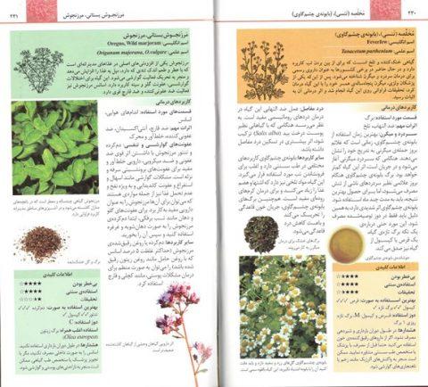 کتاب راهنمای کاربردی گیاهان دارویی جلال عباسیان محمدتقی عبادی