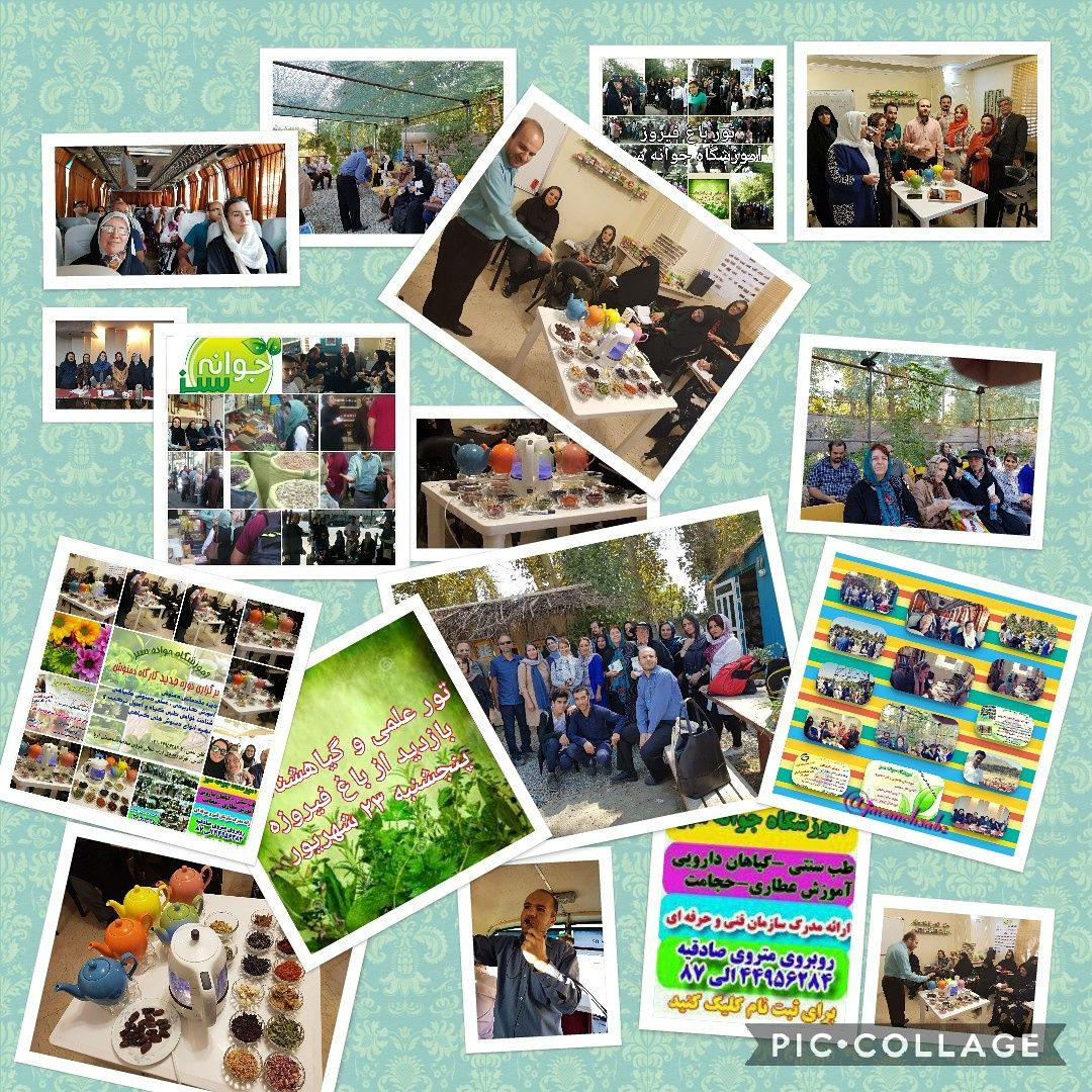 آموزشگاه جوانه سبز